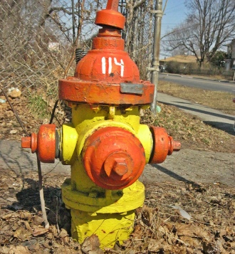 Fire hydrant 114 CC2.0 Photo by Barb